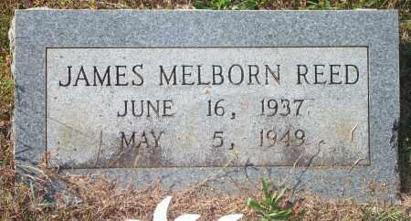 REED, JAMES MELBORN - Newton County, Arkansas | JAMES MELBORN REED - Arkansas Gravestone Photos