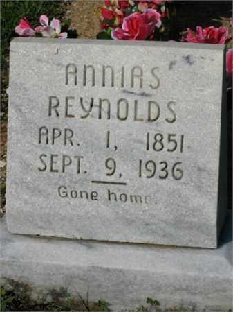 REYNOLDS, ANNIAS - Newton County, Arkansas   ANNIAS REYNOLDS - Arkansas Gravestone Photos