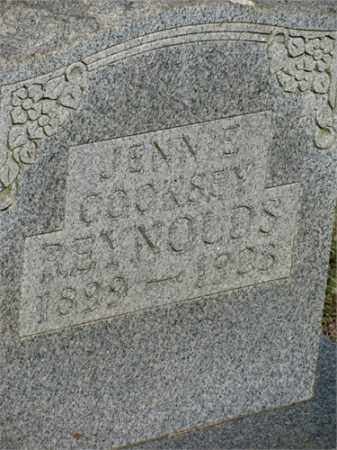 COOKSEY REYNOLDS, JENNIE - Newton County, Arkansas | JENNIE COOKSEY REYNOLDS - Arkansas Gravestone Photos