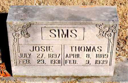 SIMS, THOMAS - Newton County, Arkansas   THOMAS SIMS - Arkansas Gravestone Photos