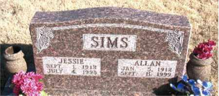 SIMS, ALLAN - Newton County, Arkansas   ALLAN SIMS - Arkansas Gravestone Photos