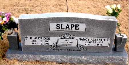 SLAPE, NANCY ALBERTINE - Newton County, Arkansas | NANCY ALBERTINE SLAPE - Arkansas Gravestone Photos