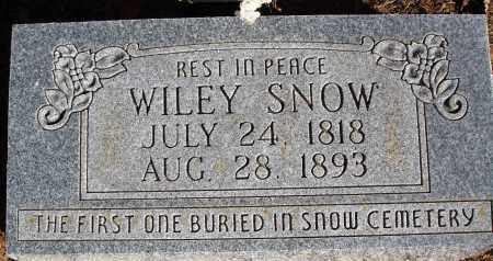 SNOW, WILEY - Newton County, Arkansas | WILEY SNOW - Arkansas Gravestone Photos