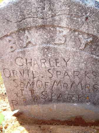 SPARKS, CHARLEY ORVIL - Newton County, Arkansas   CHARLEY ORVIL SPARKS - Arkansas Gravestone Photos