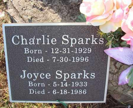SPARKS, JOYCE - Newton County, Arkansas | JOYCE SPARKS - Arkansas Gravestone Photos
