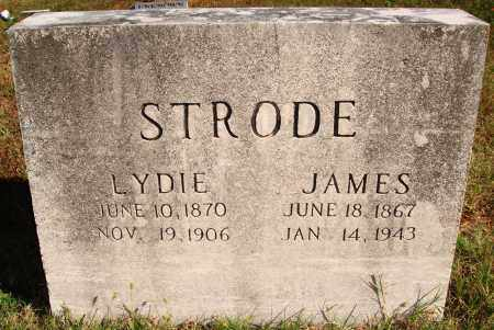 ELLISON STRODE, LYDIE - Newton County, Arkansas | LYDIE ELLISON STRODE - Arkansas Gravestone Photos