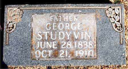 STUDYVIN, GEORGE - Newton County, Arkansas   GEORGE STUDYVIN - Arkansas Gravestone Photos
