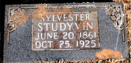 STUDYVIN, SYLVESTER - Newton County, Arkansas   SYLVESTER STUDYVIN - Arkansas Gravestone Photos