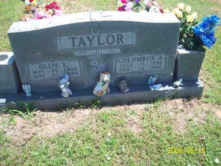 TAYLOR, OLLIE ESTER - Newton County, Arkansas | OLLIE ESTER TAYLOR - Arkansas Gravestone Photos
