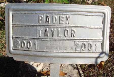 TAYLOR, PADEN - Newton County, Arkansas | PADEN TAYLOR - Arkansas Gravestone Photos
