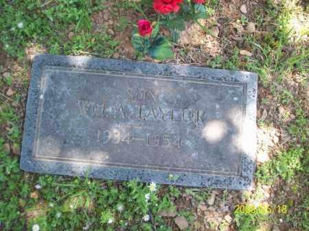 TAYLOR, WILLIAM A - Newton County, Arkansas | WILLIAM A TAYLOR - Arkansas Gravestone Photos