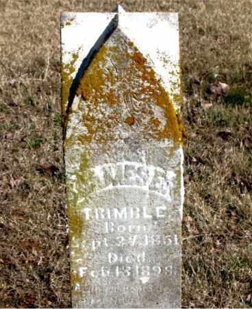 TRIMBLE, JAMES E. - Newton County, Arkansas | JAMES E. TRIMBLE - Arkansas Gravestone Photos