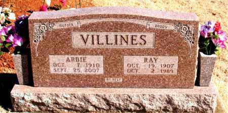VILLINES, RAY - Newton County, Arkansas | RAY VILLINES - Arkansas Gravestone Photos
