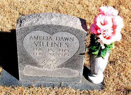VILLINES, AMELIA DAWN - Newton County, Arkansas | AMELIA DAWN VILLINES - Arkansas Gravestone Photos
