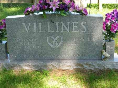 VILLINES, PERRY LEE - Newton County, Arkansas | PERRY LEE VILLINES - Arkansas Gravestone Photos