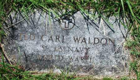 WALDON (VETERAN WWII), TED CARL - Newton County, Arkansas   TED CARL WALDON (VETERAN WWII) - Arkansas Gravestone Photos