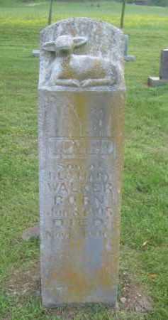 WALKER, VOYED - Newton County, Arkansas | VOYED WALKER - Arkansas Gravestone Photos