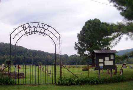 *WALNUT GROVE CEMETERY GATE,  - Newton County, Arkansas |  *WALNUT GROVE CEMETERY GATE - Arkansas Gravestone Photos