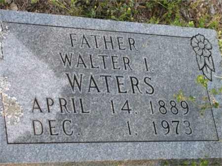 WATERS, WALTER I. - Newton County, Arkansas | WALTER I. WATERS - Arkansas Gravestone Photos