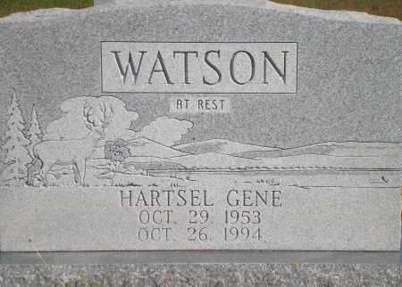 WATSON, HARTSEL GENE - Newton County, Arkansas | HARTSEL GENE WATSON - Arkansas Gravestone Photos