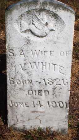 WHITE, S. A. - Newton County, Arkansas | S. A. WHITE - Arkansas Gravestone Photos
