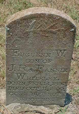 WHITELEY, EUGUENE W. - Newton County, Arkansas | EUGUENE W. WHITELEY - Arkansas Gravestone Photos