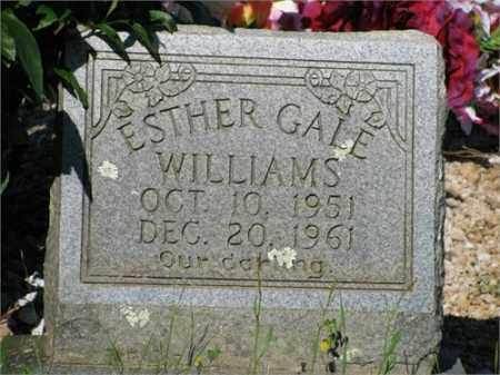 WILLIAMS, ESTHER GALE - Newton County, Arkansas   ESTHER GALE WILLIAMS - Arkansas Gravestone Photos