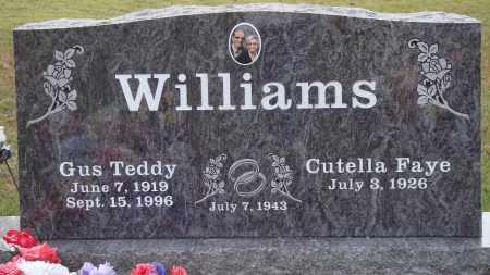 WILLIAMS, GUS TEDDY - Newton County, Arkansas   GUS TEDDY WILLIAMS - Arkansas Gravestone Photos