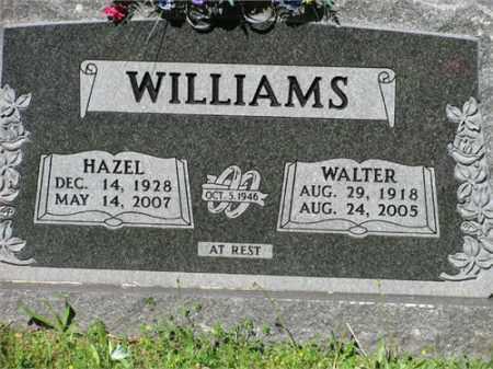 WILLIAMS, WALTER - Newton County, Arkansas | WALTER WILLIAMS - Arkansas Gravestone Photos