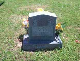 WILLIS, IVA - Newton County, Arkansas | IVA WILLIS - Arkansas Gravestone Photos
