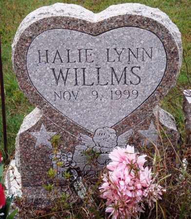 WILLMS, HALIE LYNN - Newton County, Arkansas   HALIE LYNN WILLMS - Arkansas Gravestone Photos