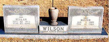 WILSON, BUSTER - Newton County, Arkansas   BUSTER WILSON - Arkansas Gravestone Photos