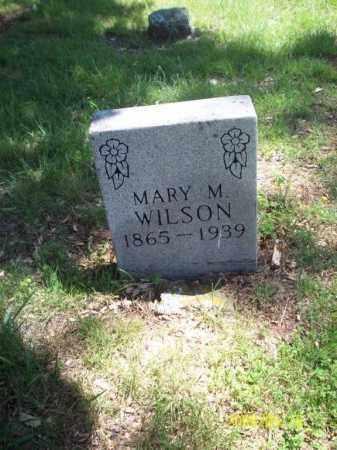 "SISCO WILSON, MARY ARMANDA LUCINDA ""MANDY"" - Newton County, Arkansas | MARY ARMANDA LUCINDA ""MANDY"" SISCO WILSON - Arkansas Gravestone Photos"