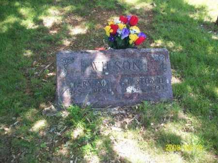 "WILSON, MARY ARMANDA LUCINDA ""MANDY"" - Newton County, Arkansas | MARY ARMANDA LUCINDA ""MANDY"" WILSON - Arkansas Gravestone Photos"