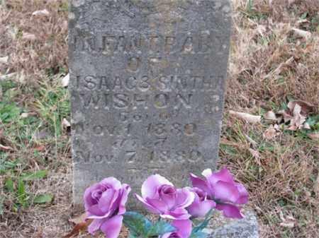 WISHON, INFANT - Newton County, Arkansas | INFANT WISHON - Arkansas Gravestone Photos