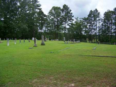 *OVERVIEW,  - Ouachita County, Arkansas |  *OVERVIEW - Arkansas Gravestone Photos