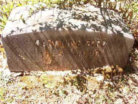 BIRD, CAROLINE LEAH - Ouachita County, Arkansas | CAROLINE LEAH BIRD - Arkansas Gravestone Photos