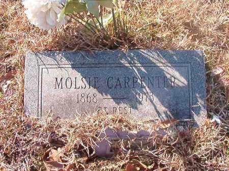 CARPENTER, MOLSIE - Ouachita County, Arkansas | MOLSIE CARPENTER - Arkansas Gravestone Photos
