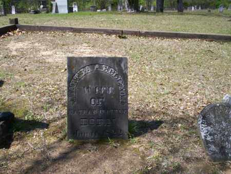 CLIFTON, MARTHA A.E. - Ouachita County, Arkansas   MARTHA A.E. CLIFTON - Arkansas Gravestone Photos