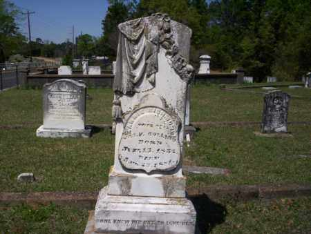 RICHMOND COLLINS, FANNIE - Ouachita County, Arkansas | FANNIE RICHMOND COLLINS - Arkansas Gravestone Photos