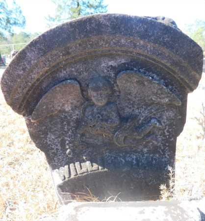 DEETS, WILLIE LINN - Ouachita County, Arkansas | WILLIE LINN DEETS - Arkansas Gravestone Photos