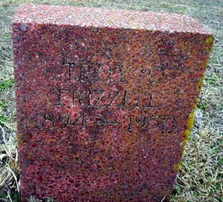FRIZZELL, TROY O - Ouachita County, Arkansas | TROY O FRIZZELL - Arkansas Gravestone Photos