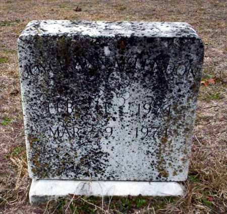 MCLENDON, JOYCE ANN - Ouachita County, Arkansas | JOYCE ANN MCLENDON - Arkansas Gravestone Photos