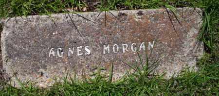 MORGAN, AGNES - Ouachita County, Arkansas | AGNES MORGAN - Arkansas Gravestone Photos