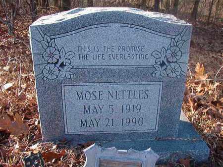 NETTLES, MOSE - Ouachita County, Arkansas   MOSE NETTLES - Arkansas Gravestone Photos