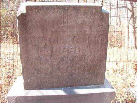 OGLESBY, CHRISTINA - Ouachita County, Arkansas | CHRISTINA OGLESBY - Arkansas Gravestone Photos