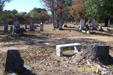 *OVERVIEW OAKLAND  #4, . - Ouachita County, Arkansas | . *OVERVIEW OAKLAND  #4 - Arkansas Gravestone Photos
