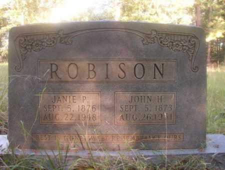 ROBISON, JANIE P - Ouachita County, Arkansas | JANIE P ROBISON - Arkansas Gravestone Photos