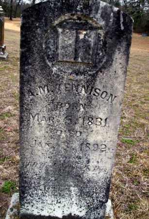 TENNISON, A.M. - Ouachita County, Arkansas | A.M. TENNISON - Arkansas Gravestone Photos