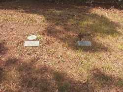 *WALLACE CEMETERY,  - Ouachita County, Arkansas    *WALLACE CEMETERY - Arkansas Gravestone Photos